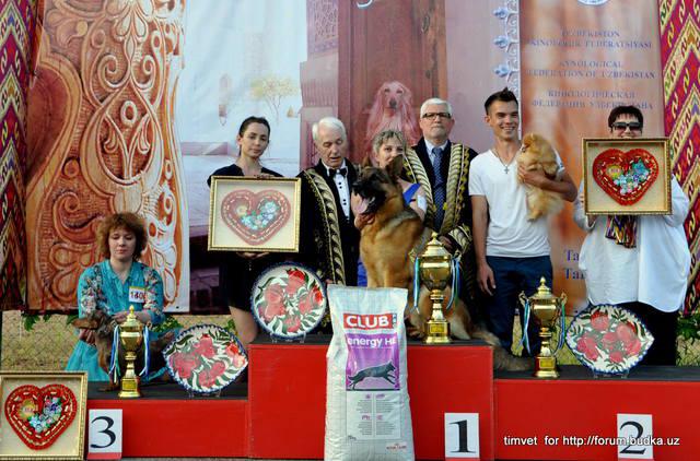 Империя Мокко Клаудия Кардинале - 3 - я собака выставки ранга CACIB